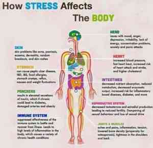 Wiccid 5 Tips to Reduce Stress